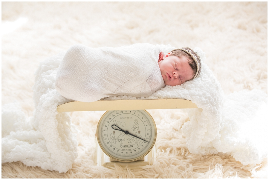 Albany Newborn Photographer-2965.jpg