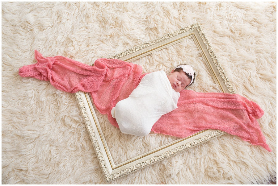 Albany Newborn Photographer-2955.jpg