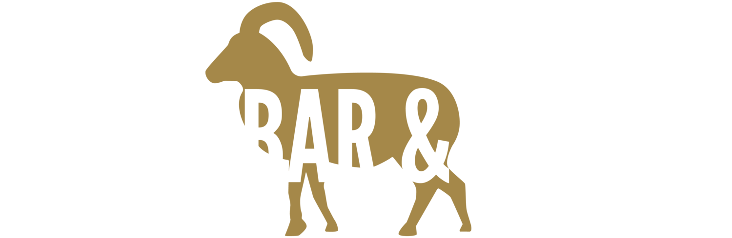 Bar, Lounge & Event Space in Rochester, NY