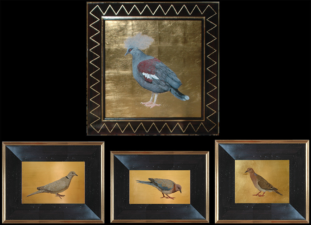 top: Blue Crowned Pidgeon, 27h x 27w bottom left: Ring Necked Dove, 14/1/2h x 18 1/2w middle: Laughing Dove, 12/1/2h x 17 1/2w right: Zenaida Dove, 14 1/2h x 16 1/2w oil on board, hand gilded background and frame, contact for pricing