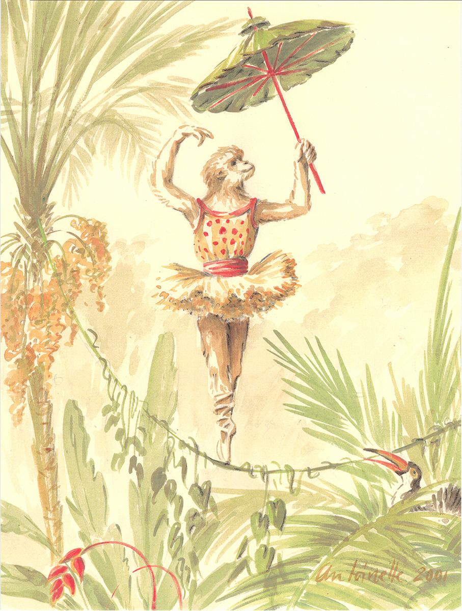 Monkey Illustrations