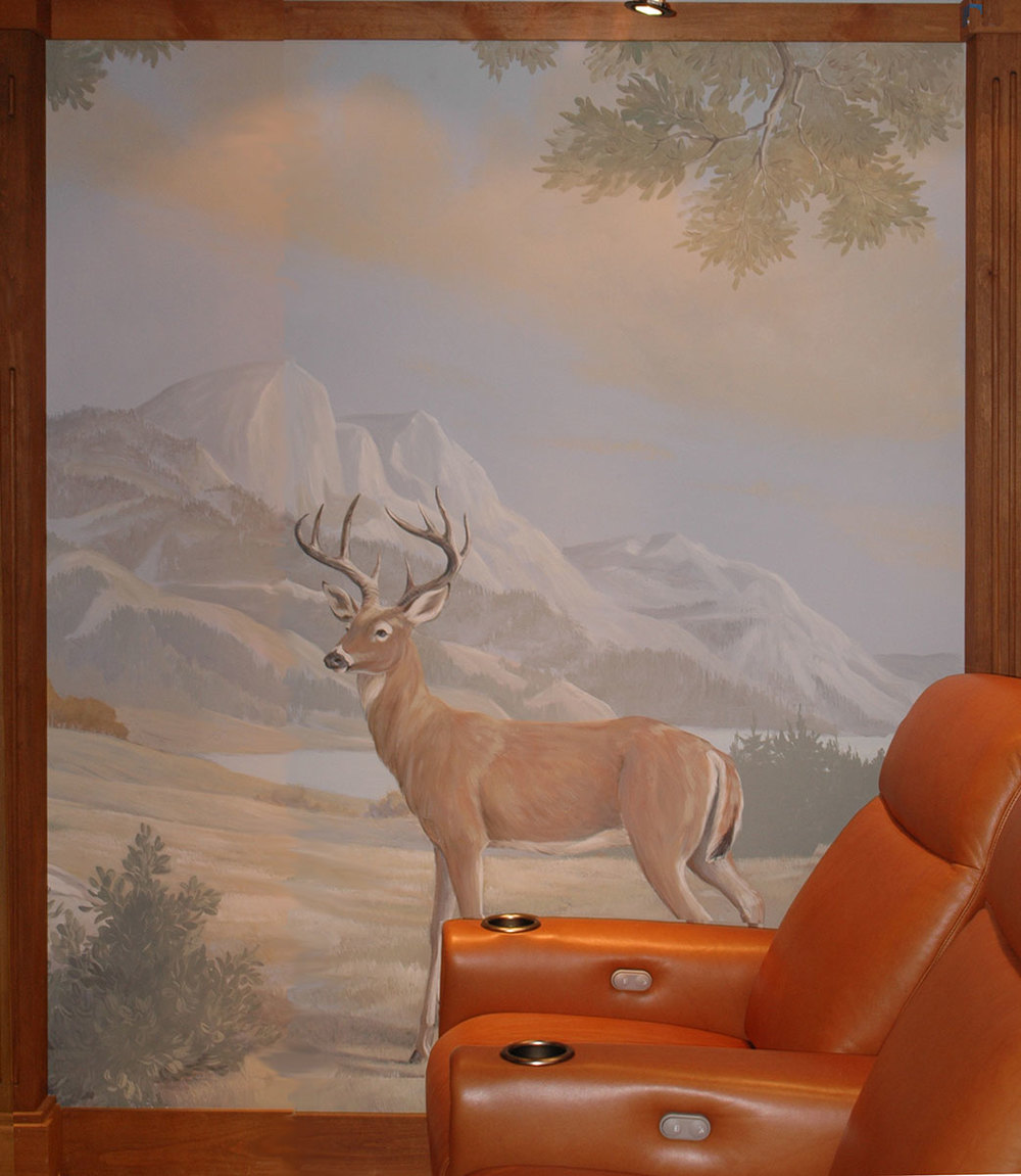 A Home Theater in the Sierras
