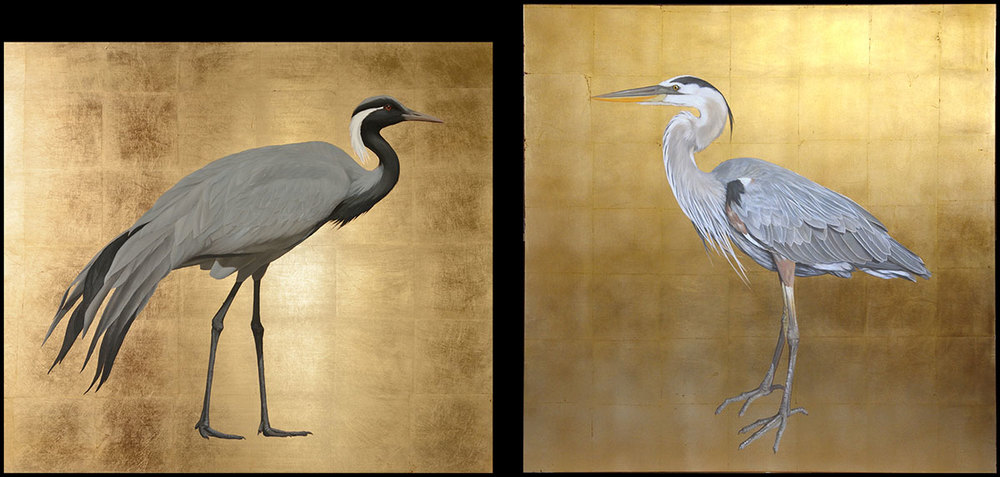 Demoiselle Crane and Heron