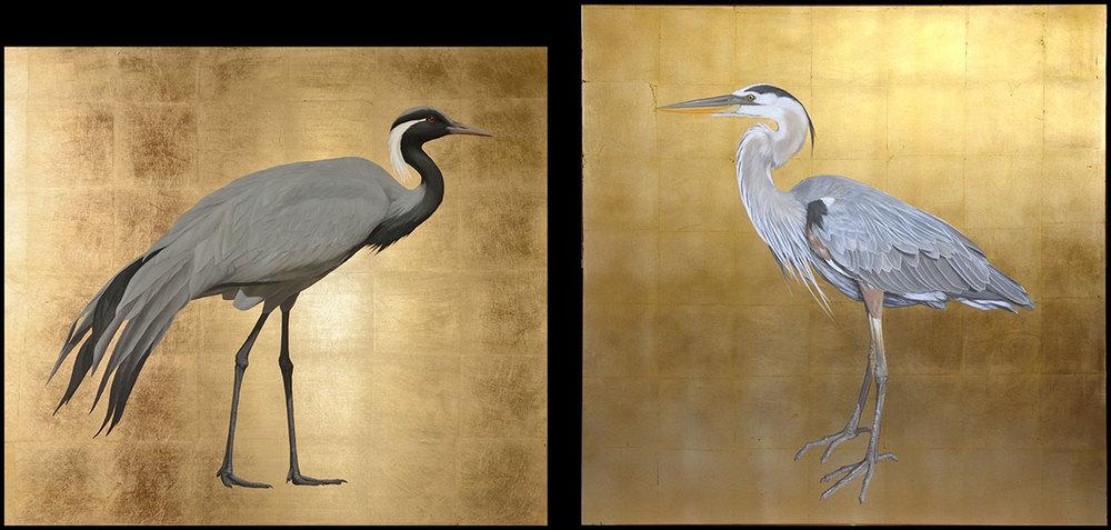Demoiselle Crane and Heron