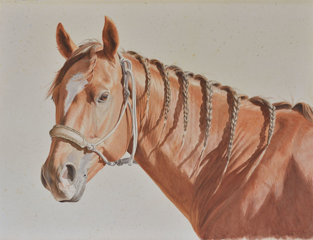 Horse with Braids