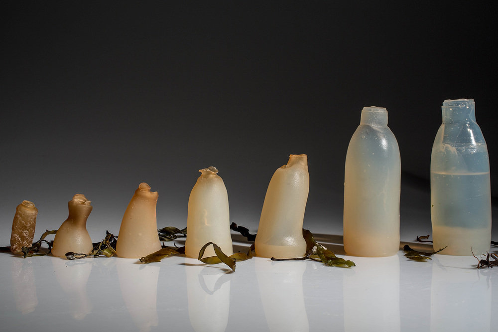 The process of decomposition of the bottle made from Agar Powder, by Ari Jonsson.
