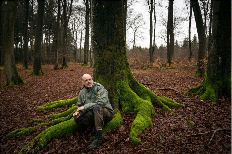 Peter Wohlleben in the forest. Photo Credit: Gordon Welters for  The New York Times