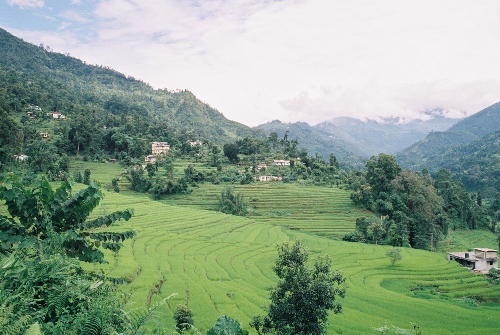 Photo:  Anja Disseldorp  -  Flickr :  India Sikkim - view on rice fields
