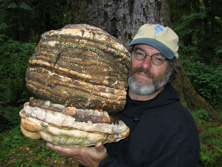 Photo: Dusty Yao-Stamets via Wikipedia; Paul Stamets holding an Agarikon Mushroom.