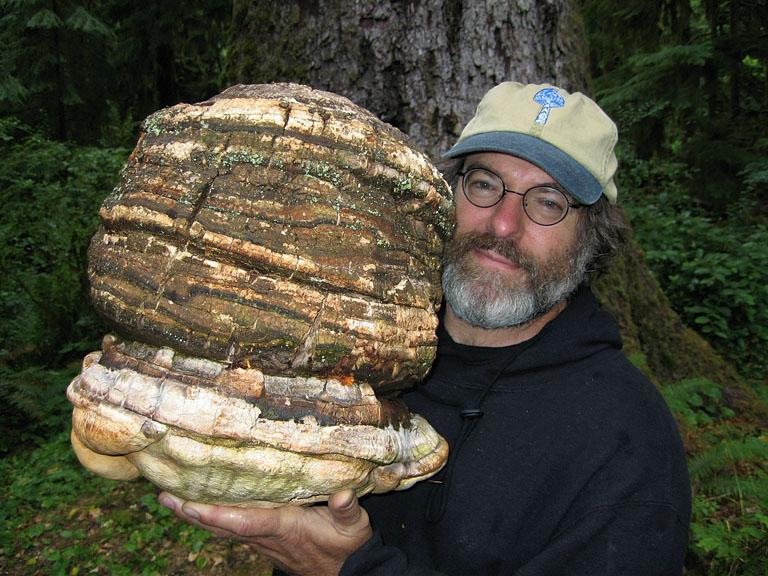 Photo:Dusty Yao-Stamets via Wikipedia; Paul Stamets holding an Agarikon Mushroom.