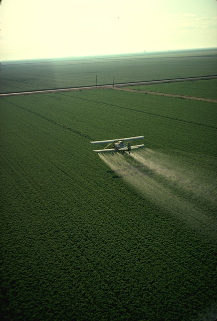 Photo:  Charles O'Rear via wikipedia; a plane dispensing pesticides.