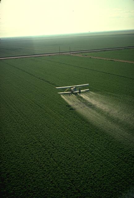 Photo: Charles O'Rear via wikipedia; a plane dispensing pesticides.