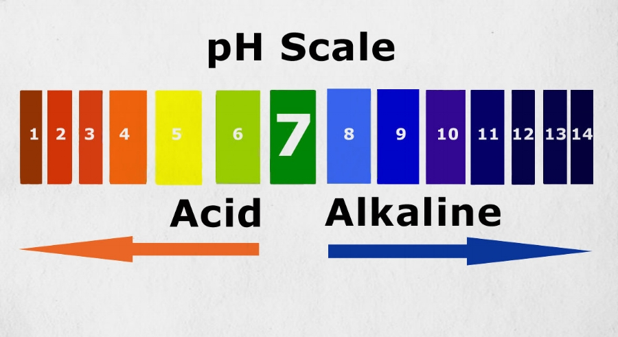 Curious about what your body pH is? Most drug stores sell pH kits.