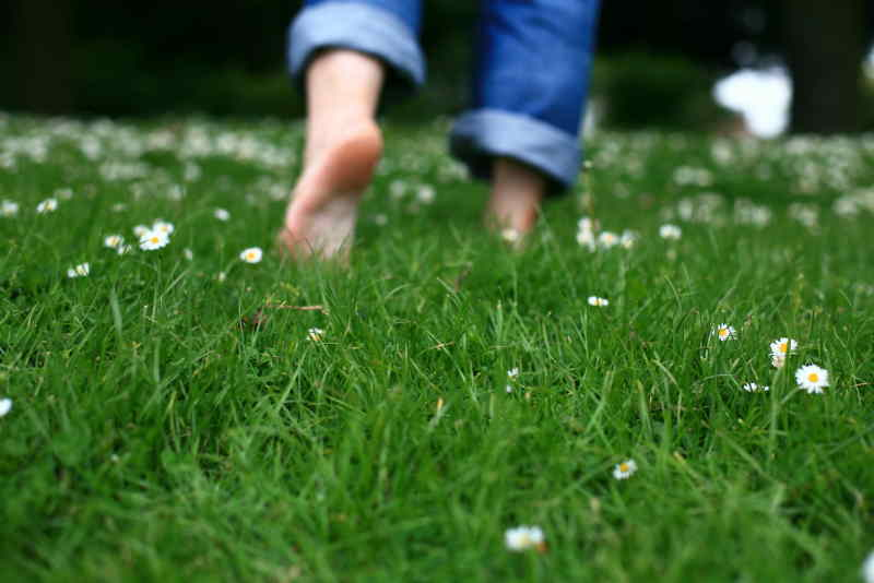 Barefoot-Grass-Walking-Health.jpg
