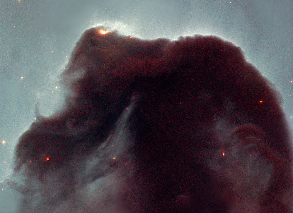 In 2001, NASA polled internet users to find out what they would most like Hubble to observe; they overwhelmingly selected the Horsehead Nebula.