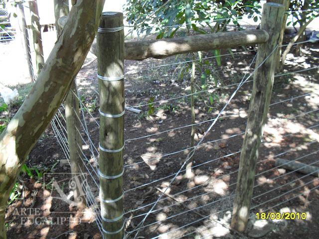 Cerca Eucalipto Autoclavado com fios de arame