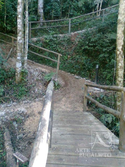 Guada corpo Eucalipto autoclavado Citriodora , Campina Grande do Sul