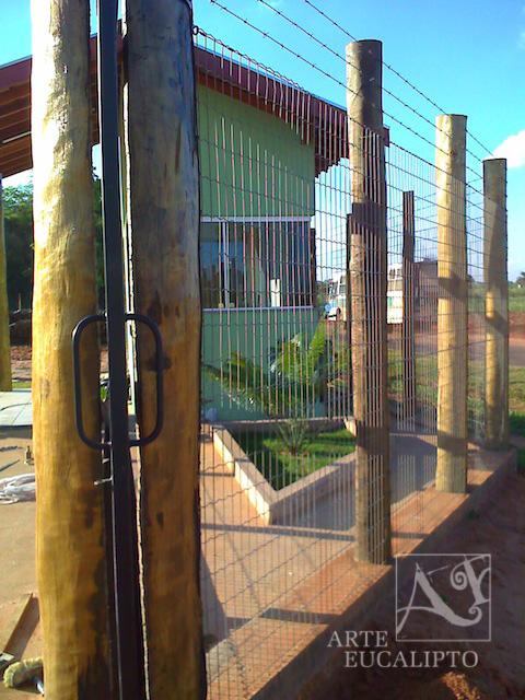 Cerca com portão imbutido Eucalipto Citriodora