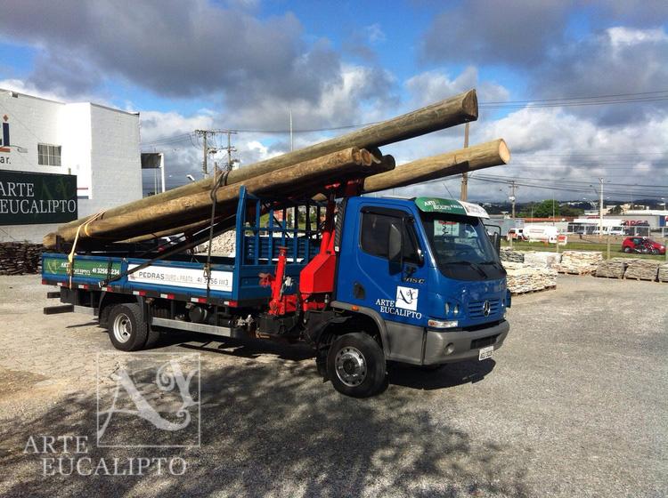 Conjunto caminhão munck para entrega de Eucalipto