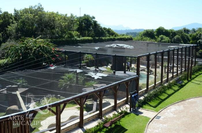 Criadouro Onça Pintada APCVS , Campina Grande do Sul - Pr