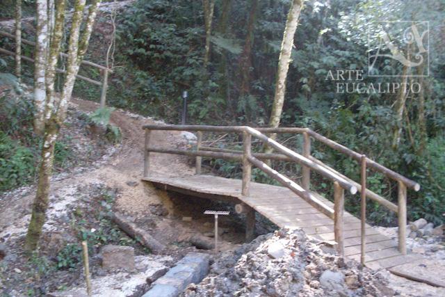 Passarela em troncos de Eucalipto Autoclavado