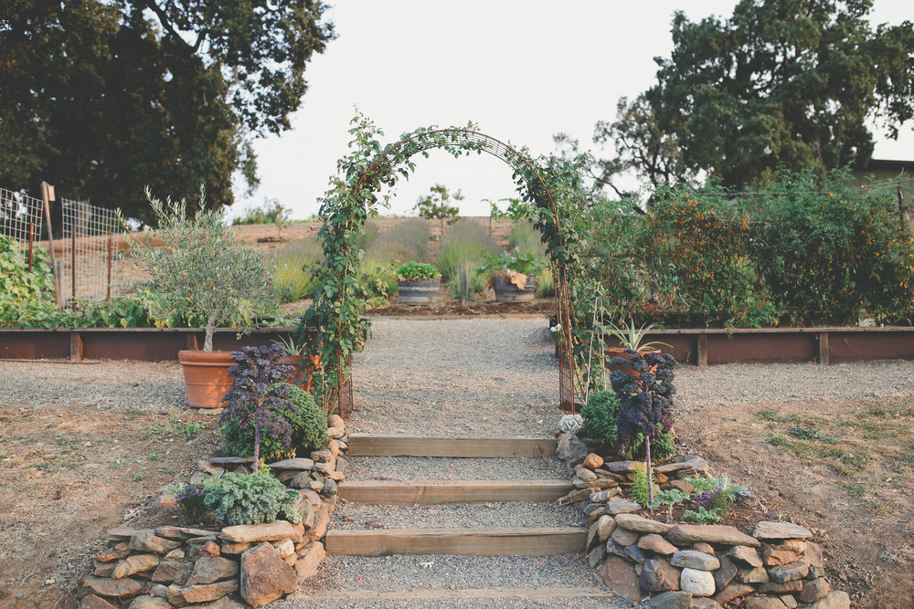 sonoma-county-healdsburg-wedding-photographer-arista-winery-garden