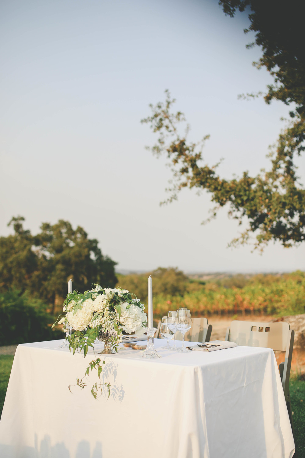 sonoma-county-healdsburg-wedding-photographer-table-arista-winery-4