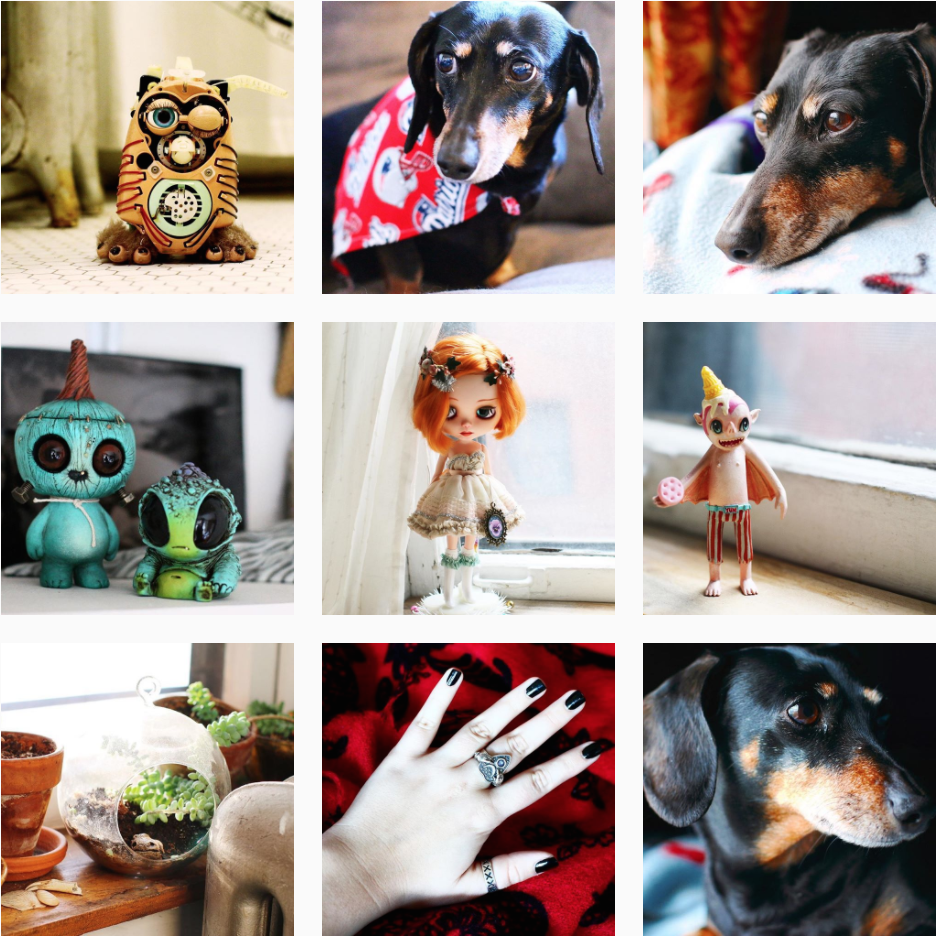 These are the most popular images of the #shyscout365 series so far.