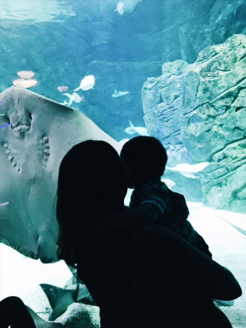 Summer 2017 Photo: Making sweet memories at   Ripley's Aquarium Canada.