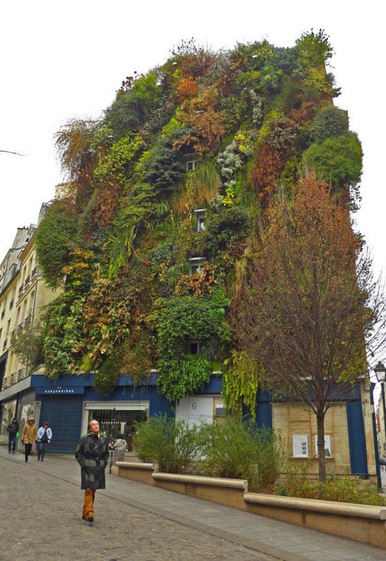 L'Oasis d'Aboukir, Paris