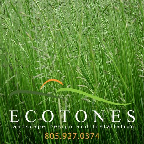 ecotones-banner