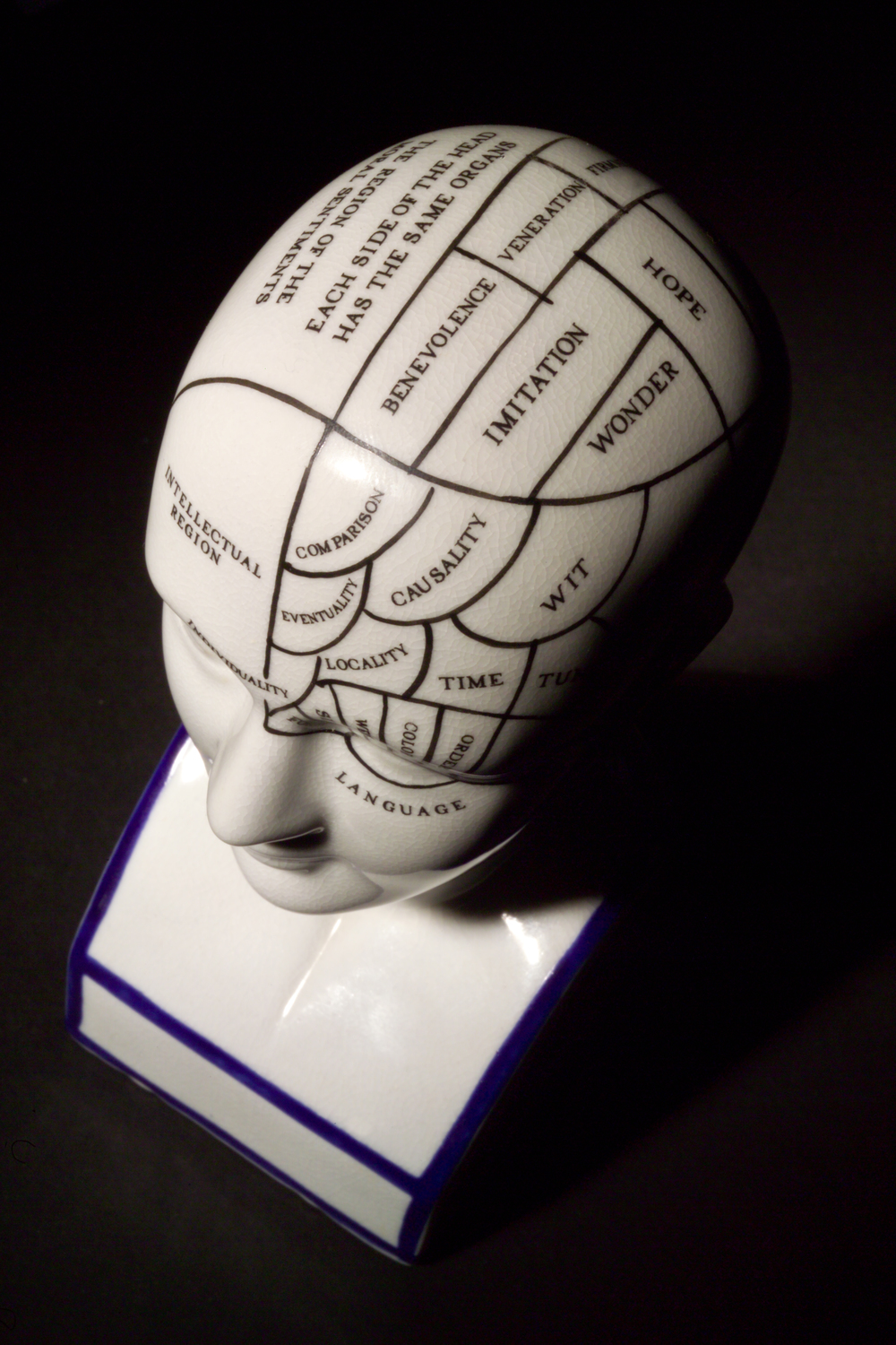 Phrenology head, a search for the cause of mental illness. Depicts areas of brain where each emotion, trait, and faculty lay: if certain area of the brain was larger, this meant the individual had more of that trait.