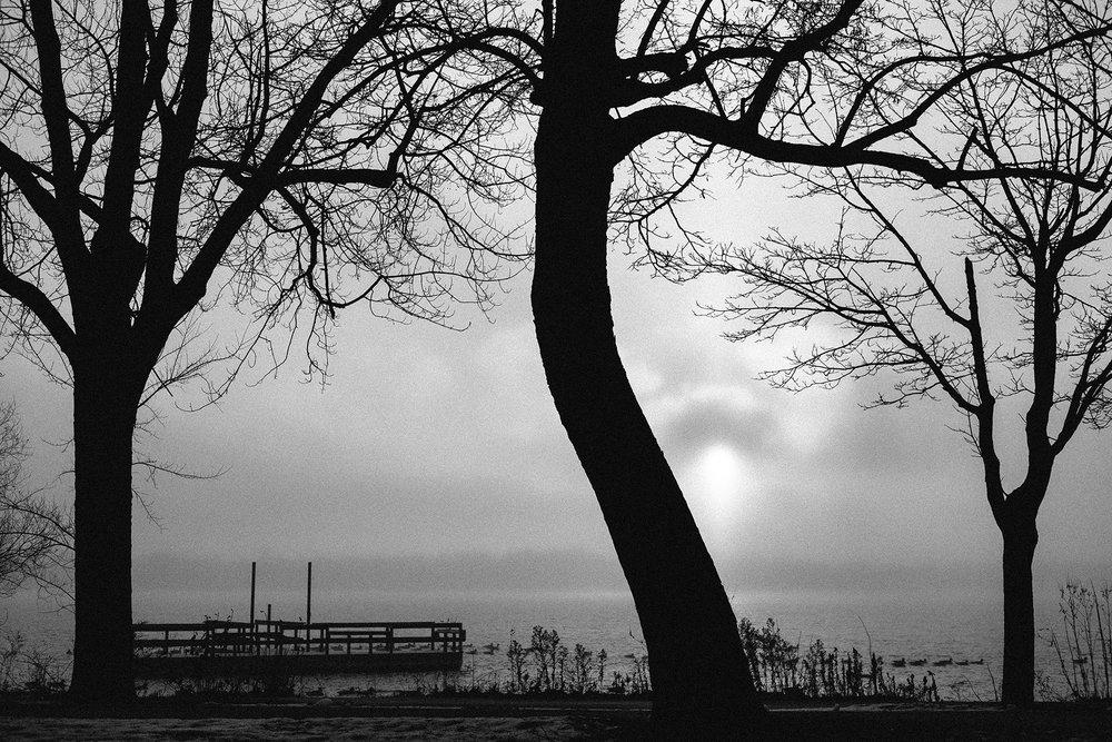 FUJI_XPro1_35f2_lake-calhoun-fog-1878_1800.jpg