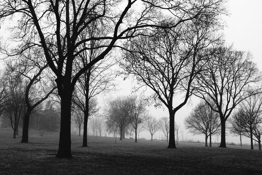 FUJI_X100s_lake-hiawatha-fog_neopan1600-1000663_1800.jpg