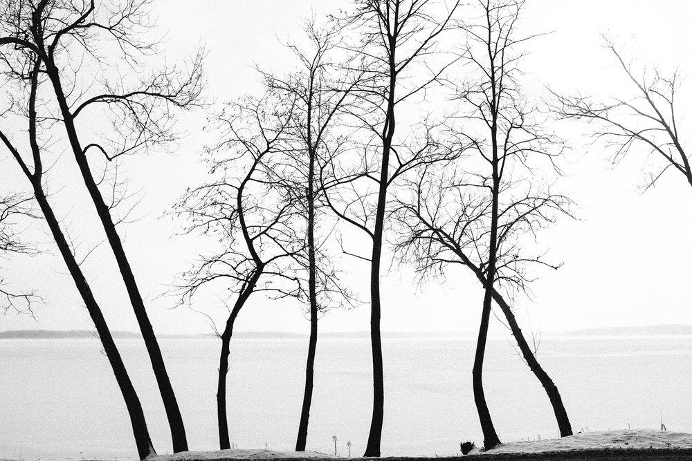 FUJI_X100S_lake-minnetonka_neopan1600-0936_1800.jpg