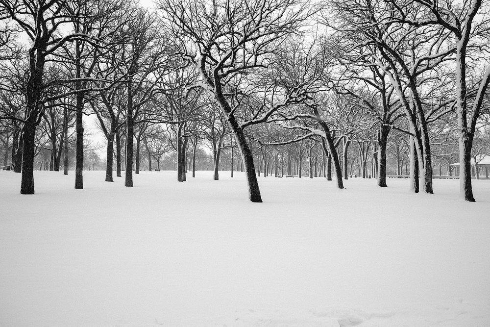 FUJI_XPro1c_14_minneapolis-winter-3878_1800.jpg