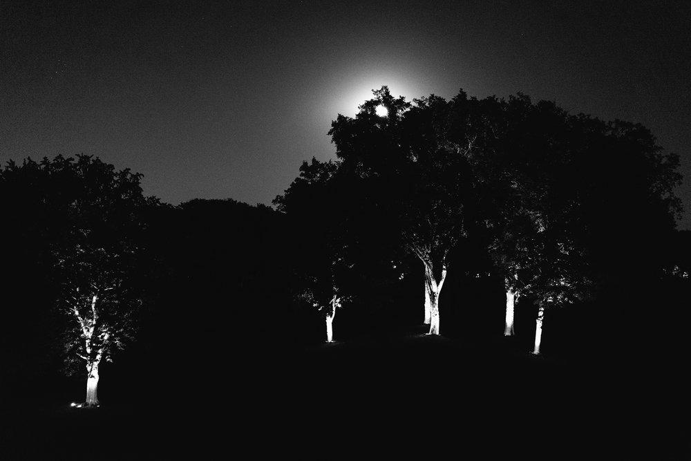 SONY_A7II_55_moon-over-interlachen_neopan1600-7103578_1800.jpg