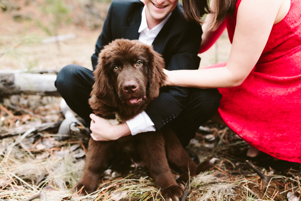 Dean and Carrie- Bend, Oregon Engagement- Hurtienne Photography (13)