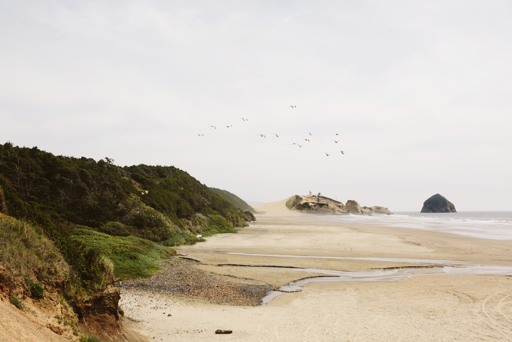 Pacific City, Portland Oregon Wedding Photographers- Engagement Session (1).jpg