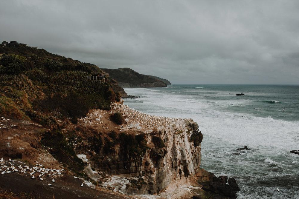 New Zealand- Grace and Jaden Photography (27).jpg