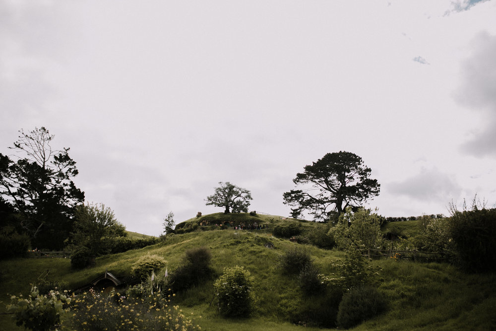 New Zealand- Grace and Jaden Photography (48).jpg