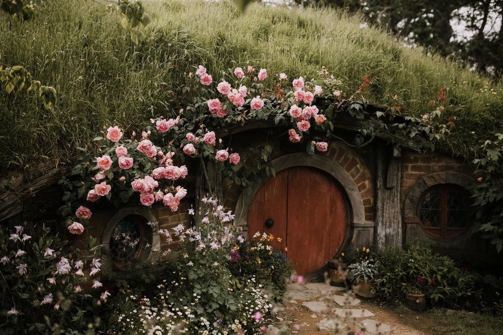 New Zealand- Grace and Jaden Photography (51).jpg
