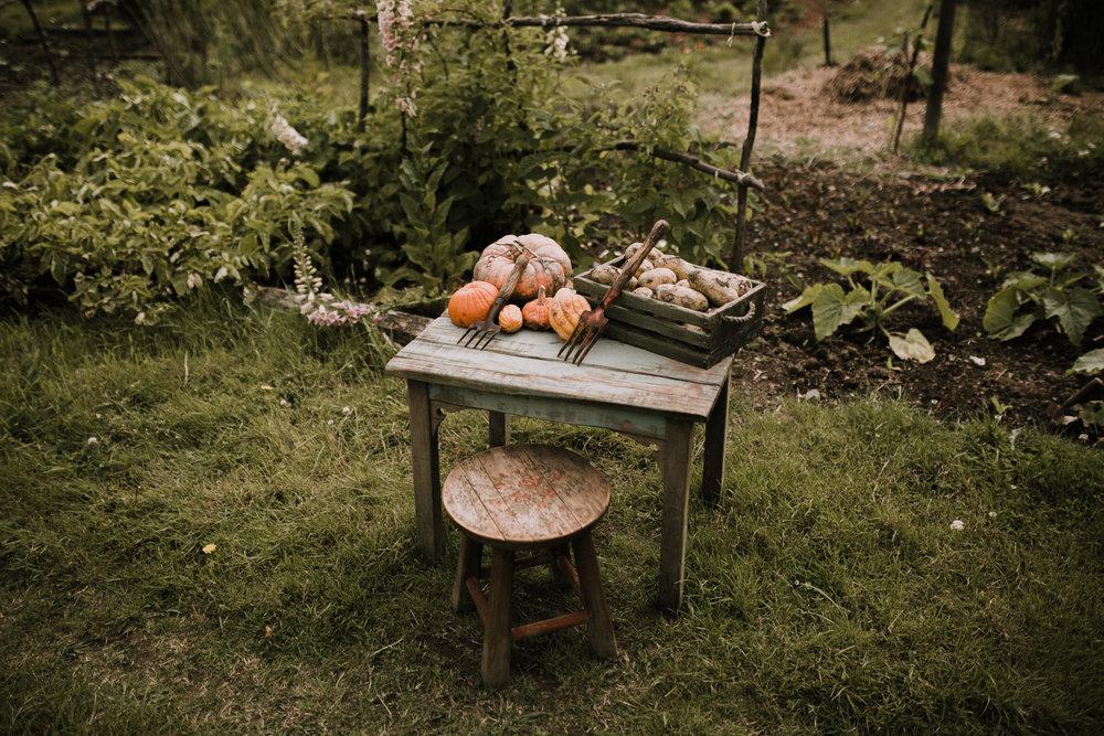 New Zealand- Grace and Jaden Photography (53).jpg