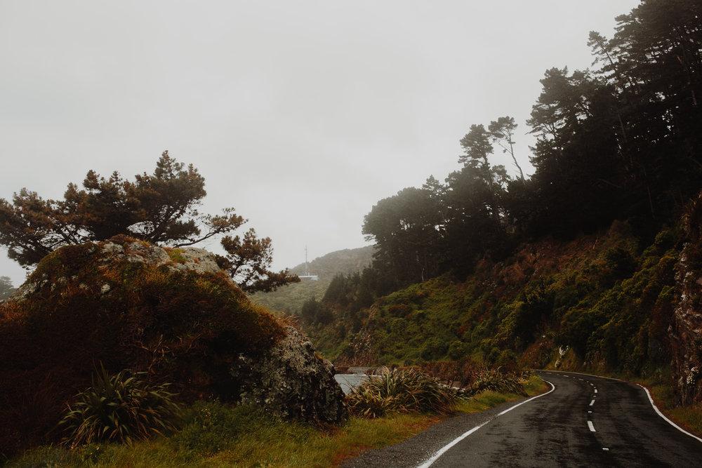 New Zealand- Grace and Jaden Photography (149).jpg