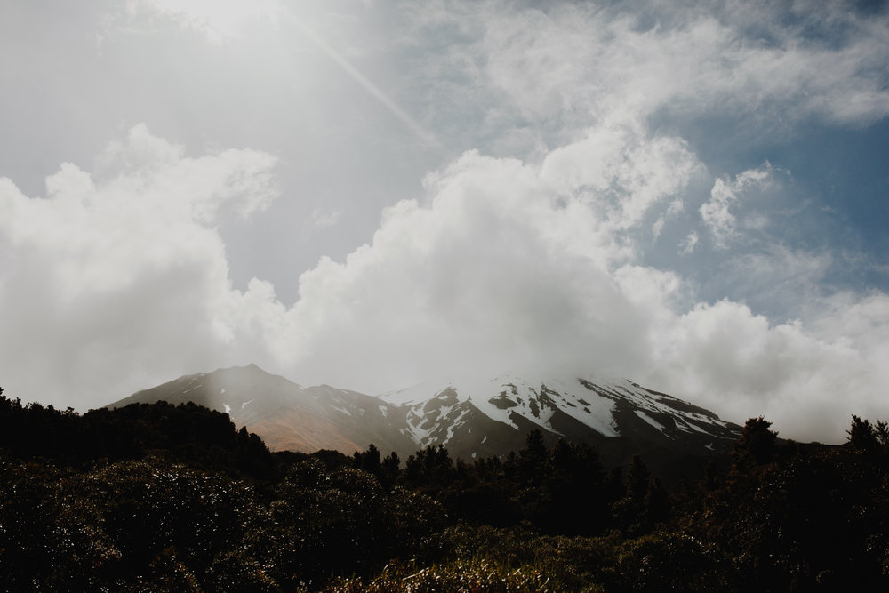 New Zealand- Grace and Jaden Photography (190).jpg