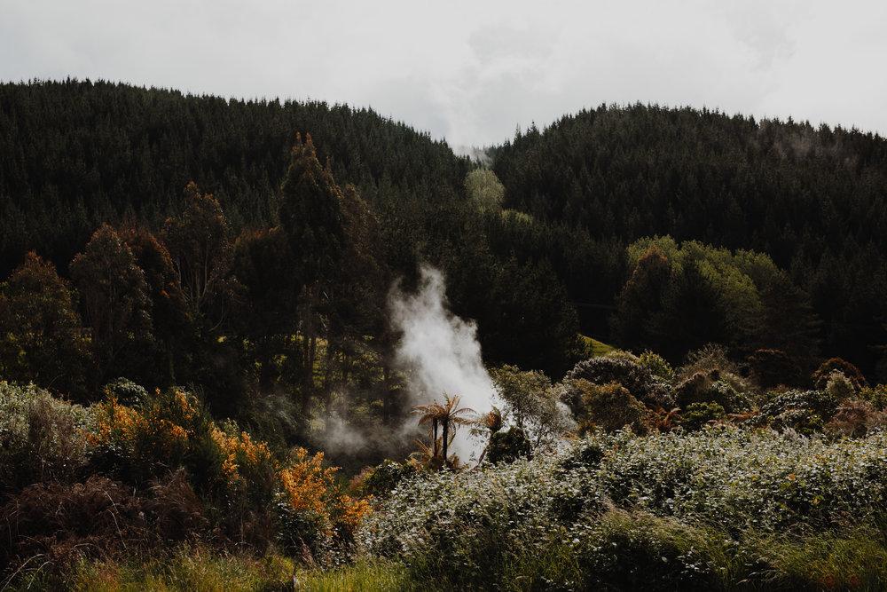 New Zealand- Grace and Jaden Photography (263).jpg