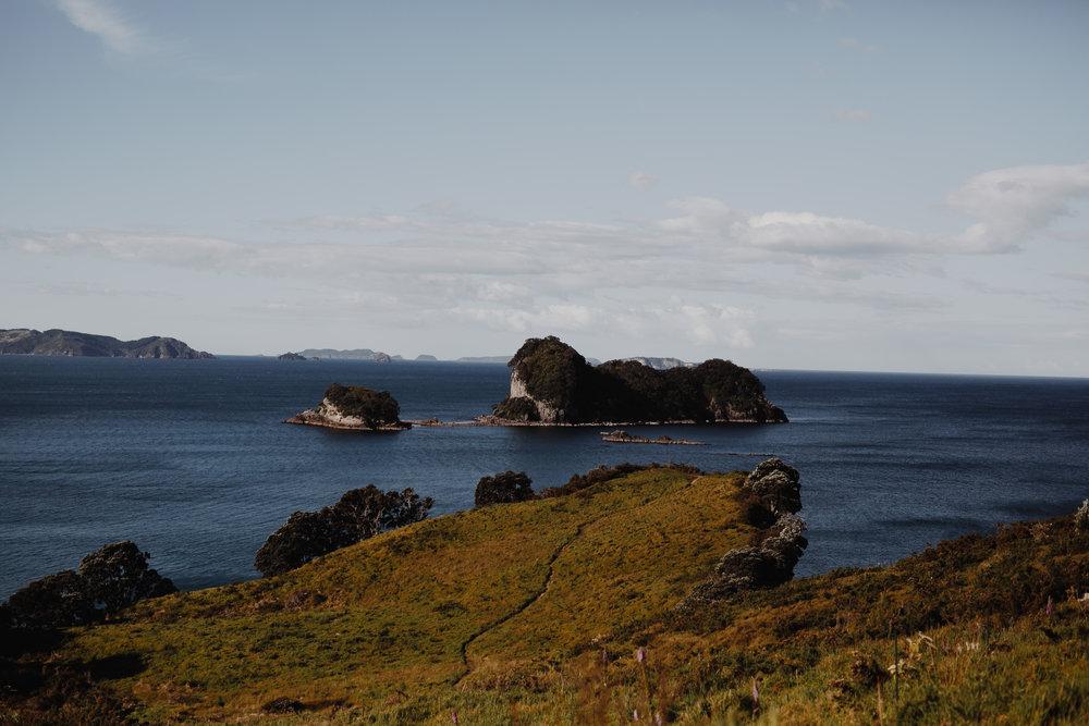 New Zealand- Grace and Jaden Photography (295).jpg