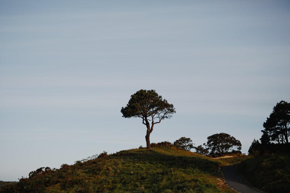 New Zealand- Grace and Jaden Photography (318).jpg