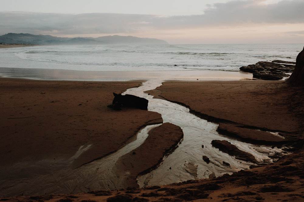 Best Places to Elope on the Oregon Coast- Gallery (4).jpg