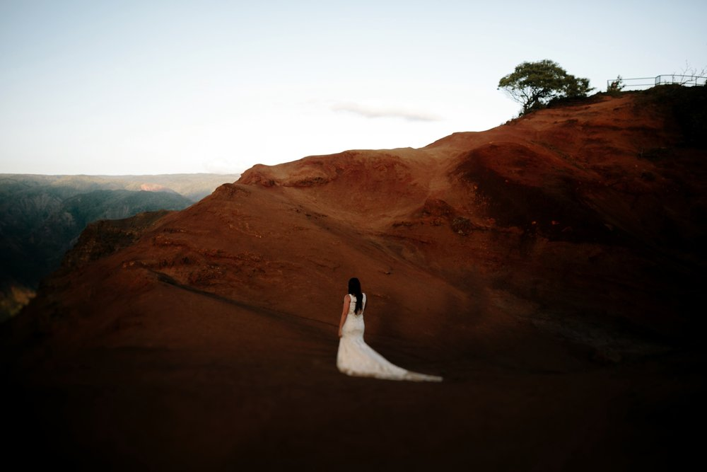 Wiamea Canyon, Kauai Wedding- Grace and Jaden Photography (10).jpg